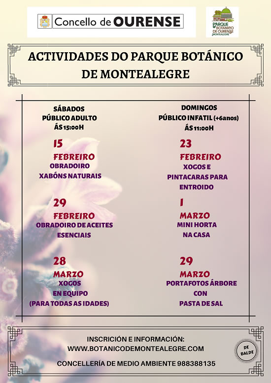 Actividades Montealegre